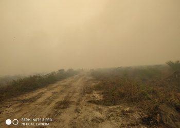kawasan terbakar, di desa Sido Mukti Kecamatan Dendang Kabupaten Tanjung Jabung Barat