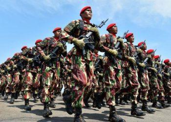 Tentara Nasional Indonesia (TNI). (istimewa)