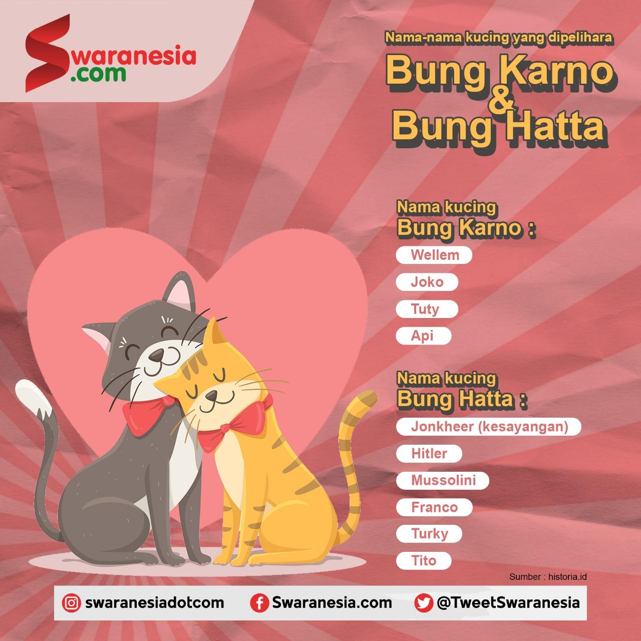 Ternyata Sukarno Hatta Sangat Menyukai Kucing Ini Nama Namanya News And Entertainment
