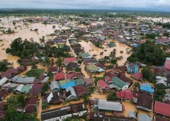 Banjir Kalimantan Selatan (ist)